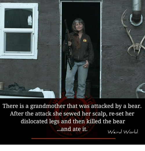 Memes, 🤖, and Set: There is a grandmother that was attacked by a bear.  After the attack she sewed her scalp, re-set her  dislocated legs and then killed the bear  ...and ate it.  Weird World