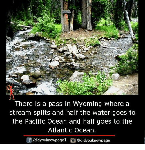 Memes, Ocean, and Water: There is a pass in Wyoming where a  stream splits and half the water goes to  the Pacific Ocean and half goes to the  Atlantic Ocean.  f /didyouknowpage  Cu  @didyouknowpage