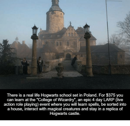 Magical Places To Stay In Europe: Funny Poland Memes Of 2017 On Me.me