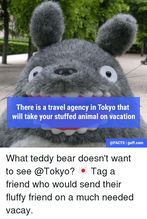 Memes, 🤖, and Tokyo: There is a travel agency in Tokyo that  will take your stuffed animal on vacation  @FACTS I guff.com What teddy bear doesn't want to see @Tokyo? 🇯🇵 Tag a friend who would send their fluffy friend on a much needed vacay.