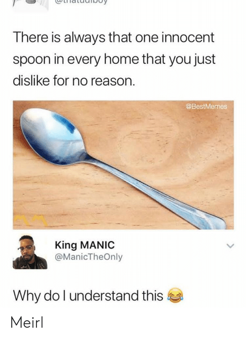 Home, Reason, and MeIRL: There is always that one innocent  spoon in every home that you just  dislike for no reason.  @BestMemes  King MANIC  @ManicTheOnly  Why do l understand this Meirl