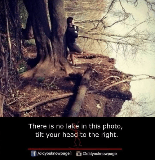 Head, Memes, and Tilt: There is no lake in this photo,  tilt your head to the right.  団/didyouknowpage!  @d.dyouknowpage