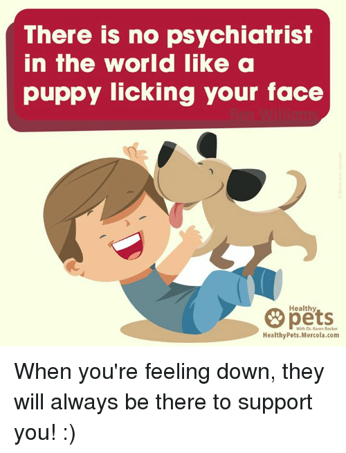 Memes, Pets, and Puppy: There is no psychiatrist  in the world like a  puppy licking your face  Healthy  pets  With Dr. Karen Becker  HealthyPets.Mercola.com When you're feeling down, they will always be there to support you! :)