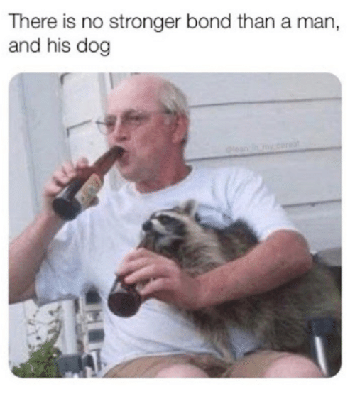 A Man And His Dog >> There Is No Stronger Bond Than A Man And His Dog Dog Meme On Me Me