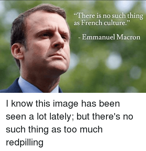 recipe: macron french have no culture [2]