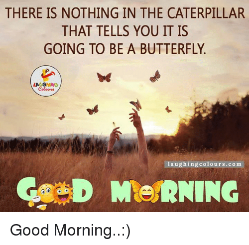 Good Morning, Butterfly, and Good: THERE IS NOTHING IN THE CATERPILLAR  THAT TELLS YOU IT IS  GOING TO BE A BUTTERFLY  LAUGHING  laughing colours.com Good Morning..:)