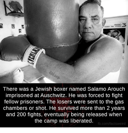 Memes, Auschwitz, and Boxer: There was a Jewish boxer named Salamo Arouch  imprisoned at Auschwitz. He was forced to fight  fellow prisoners. The losers were sent to the gas  chambers or shot. He survived more than 2 years  and 200 fights, eventually being released when  the camp was liberated.  fb.com/facts Weird