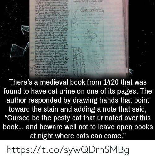 There's a Medieval Book From 1420 That Was Found to Have Cat