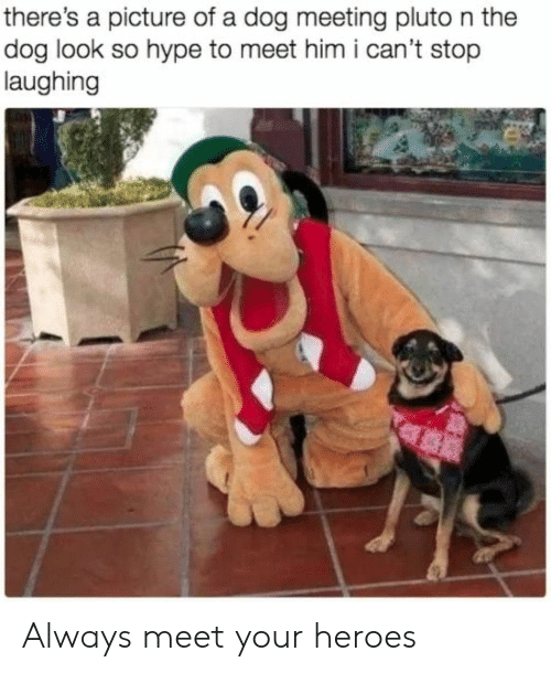 Hype, Heroes, and Pluto: there's a picture of a dog meeting pluto n the  dog look so hype to meet him i can't stop  laughing Always meet your heroes