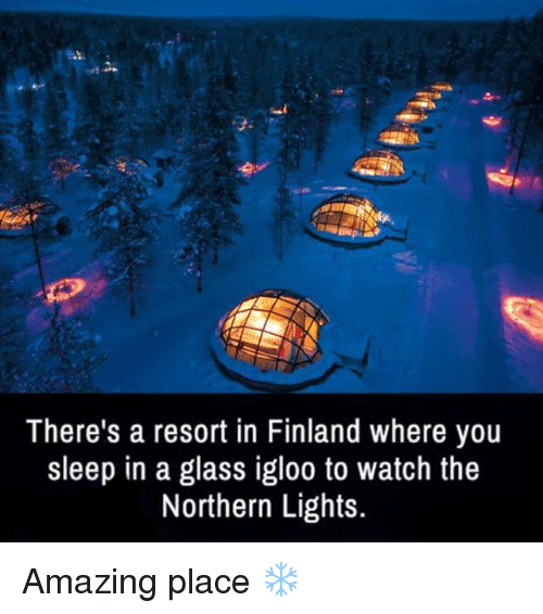 Memes, 🤖, And Finland: Thereu0027s A Resort In Finland Where You Sleep In