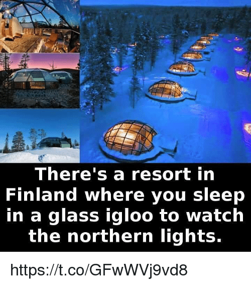 Watch, Sleep, And Finland: Thereu0027s A Resort In Finland Where You Sleep In