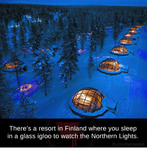 Memes, Glasses, And 🤖: Thereu0027s A Resort In Finland Where You Sleep In