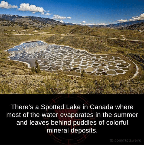 25+ Best Memes About Mineral