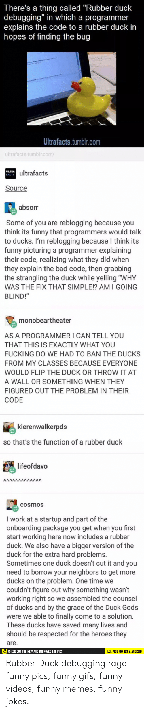"""Android, Bad, and Facts: There's a thing called """"Rubber duck  debugging"""" in which a programmer  explains the code to a rubber duck in  hopes of finding the bug  Ultrafacts.tumblr.com  ultrafacts.tumblr.com/  ultrafacts  ULTRA  FACTS  Source  absorr  Some of you are reblogging because you  think its funny that programmers would talk  to ducks. I'm reblogging because I think its  funny picturing a programmer explaining  their code, realizing what they did when  they explain the bad code, then grabbing  the strangling the duck while yelling """"WHY  WAS THE FIX THAT SIMPLE!? AMI GOING  BLIND!""""  monobeartheater  AS A PROGRAMMER I CAN TELL YOU  THAT THIS IS EXACTLY WHAT YOU  FUCKING DO WE HAD TO BAN THE DUCKS  FROM MY CLASSES BECAUSE EVERYONE  WOULD FLIP THE DUCK OR THROW IT AT  A WALL OR SOMETHING WHEN THEY  FIGURED OUT THE PROBLEM IN THEIR  CODE  kierenwalkerpds  so that's the function of a rubber duck  lifeofdavo  ΛΛΛΛΛΛΛΛΛΛΛΛ  cosrnos  I work at a startup and part of the  onboarding package you get when you first  start working here now includes a rubber  duck. We also have a bigger version of the  duck for the extra hard problems.  Sometimes one duck doesn't cut it and you  need to borrow your neighbors to get more  ducks on the problem. One time we  couldn't figure out why something wasn't  working right so we assembled the counsel  of ducks and by the grace of the Duck Gods  were we able to finally come to a solution.  These ducks have saved many lives and  should be respected for the heroes they  are.  HC CHECK OUT THE NEW AND IMPROVED LOL PICS!  LOL PICS FOR IOS &ANDROID Rubber Duck debugging rage funny pics, funny gifs, funny videos, funny memes, funny jokes."""