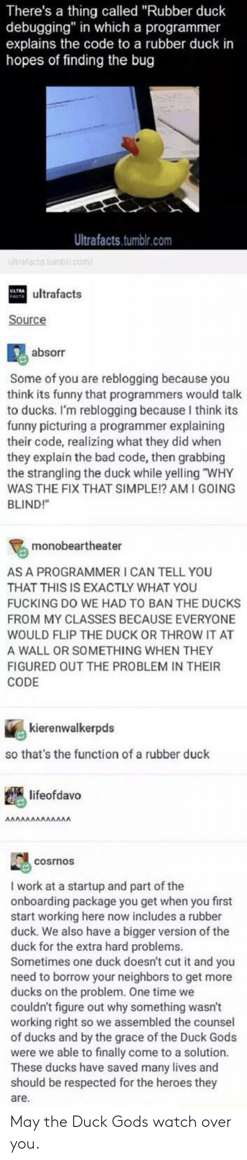 "Bad, Fucking, and Funny: There's a thing called ""Rubber duck  debugging"" in which a programmer  explains the code to a rubber duck in  hopes of finding the bug  Ultrafacts.tumblr.com  ultrafacts tmblr.com  ATultrafacts  Source  absorr  Some of you are reblogging because you  think its funny that programmers would talk  to ducks. I'm reblogging because I think its  funny picturing a programmer explaining  their code, realizing what they did when  they explain the bad code, then grabbing  the strangling the duck while yelling ""WHY  WAS THE FIX THAT SIMPLE!? AM I GOING  BLIND!""  monobeartheater  AS A PROGRAMMER I CAN TELL YOU  THAT THIS IS EXACTLY WHAT YOU  FUCKING DO WE HAD TO BAN THE DUCKS  FROM MY CLASSES BECAUSE EVERYONE  WOULD FLIP THE DUCK OR THROW IT AT  A WALL OR SOMETHING WHEN THEY  FIGURED OUT THE PROBLEM IN THEIR  CODE  kierenwalkerpds  so that's the function of a rubber duck  lifeofdavo  ΑΛΛΛΛΛΛΛΛΛΛΑ  cosrnos  work at a startup and part of the  onboarding package you get when you first  start working here now includes a rubber  duck. We also have a bigger version of the  duck for the extra hard problems.  Sometimes one duck doesn't cut it and you  need to borrow your neighbors to get more  ducks on the problem. One time we  couldn't figure out why something wasn't  working right so we assembled the counsel  of ducks and by the grace of the Duck Gods  were we able to finally come to a solution.  These ducks have saved many lives and  should be respected for the heroes they  are. May the Duck Gods watch over you."