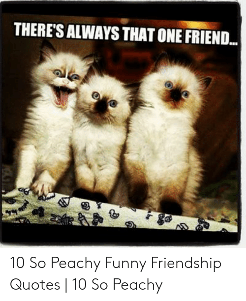 THERES ALWAYS THAT ONE FRIEND 10 So Peachy Funny Friendship ...