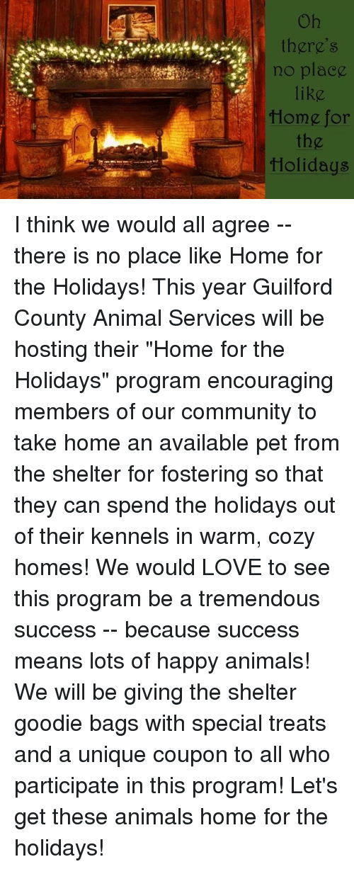 Guilford County Animal Shelter Home For The Holidays