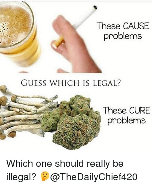 Memes, Guess, and 🤖: These CAUSE  problems  GUESS WHICH IS LEGAL?  These CURE  problems Which one should really be illegal? 🤔@TheDailyChief420