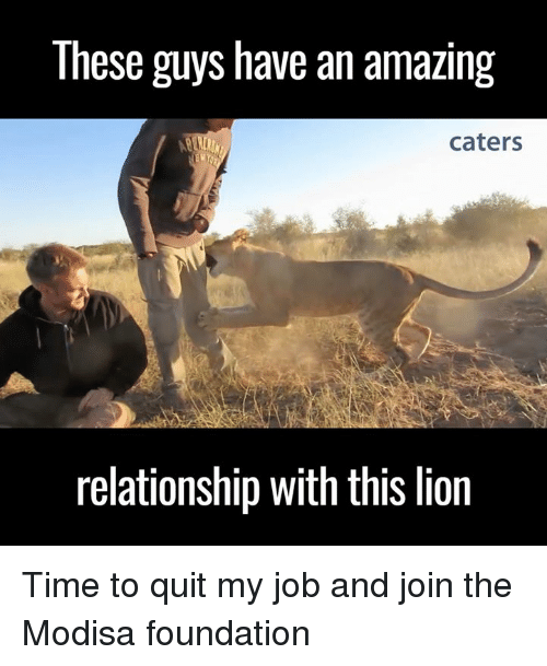 Memes, Amaz, And Jobs: These Guys Have An Amazing Caters Relationship With  This