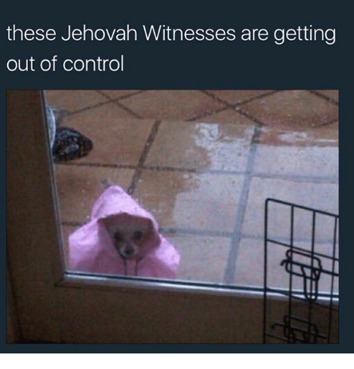 These Jehovah Witnesses Are Getting Out of Control | Meme on