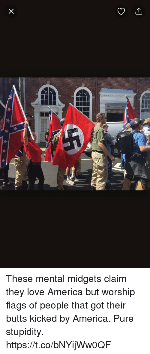 America, Love, and Nba: These mental midgets claim they love America but worship flags of people that got their butts kicked by America. Pure stupidity. https://t.co/bNYijWw0QF