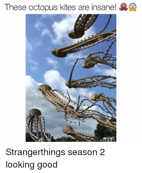 Funny, Good, and Octopus: These octopus kites are insane! R Strangerthings season 2 looking good
