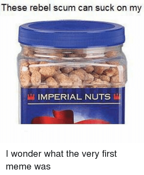 Memes, 🤖, and Imperial: These rebel scum can suck on my  IMPERIAL NUTS I wonder what the very first meme was