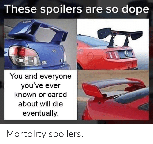 Dope, Will, and You: These spoilers are so dope  You and everyone  you ve ever  known or cared  about will die  eventually. Mortality spoilers.