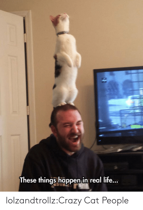 Crazy, Life, and Tumblr: These things happen in real life... lolzandtrollz:Crazy Cat People