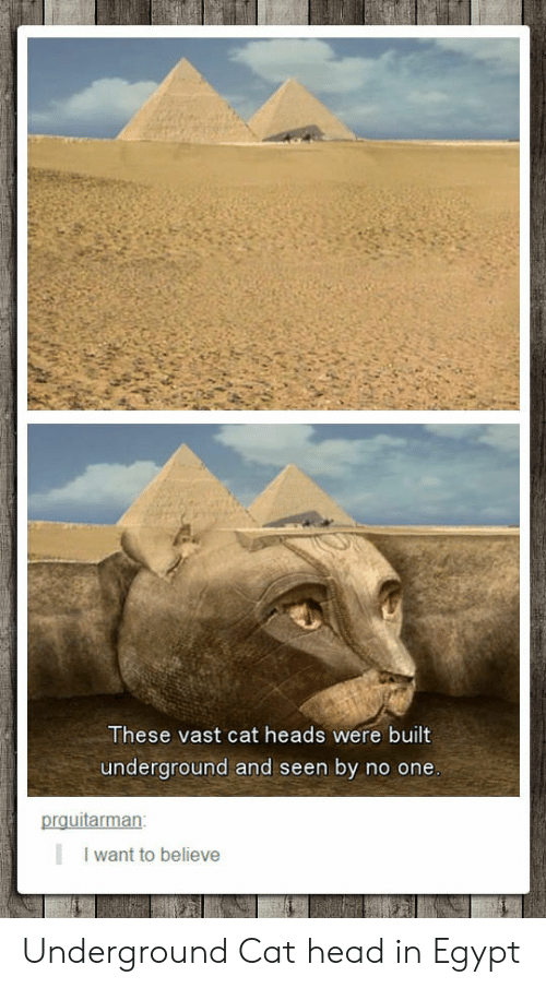 Head, Egypt, and Cat: These vast cat heads were built  underground and seen by no one  prquitarman  I want to believe Underground Cat head in Egypt