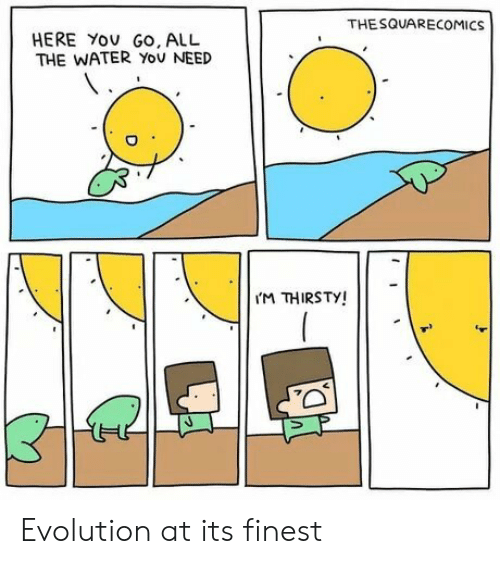 Thirsty, Evolution, and Water: THESQUARECOMICS  HERE YOU GO, ALL  THE WATER YoU NEED  M THIRSTY! Evolution at its finest