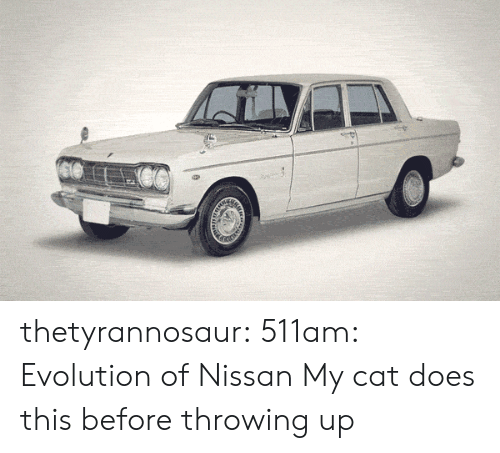Tumblr, Blog, and Evolution: thetyrannosaur:  511am: Evolution of Nissan  My cat does this before throwing up