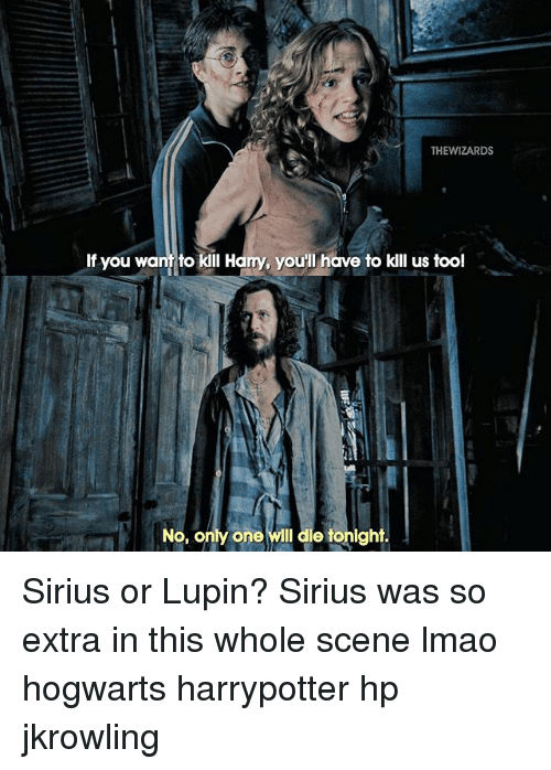 thewizards if you want to kill harry youll have to 23125342 ✅ 25 best memes about sirius sirius memes