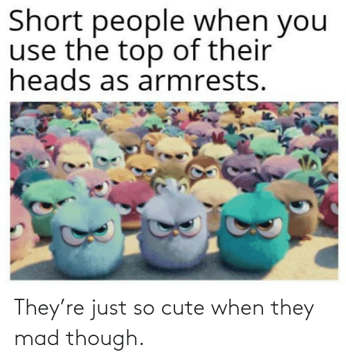 Cute, Mad, and They: They're just so cute when they mad though.