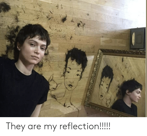 They Are My Reflection!!!!! | Funny Meme on ME ME