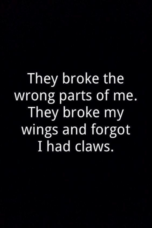 Wings, They, and Broke: They broke the  wrong parts of me.  They broke my  wings and forgot  I had claws.