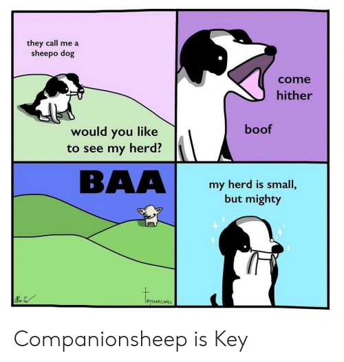 Mighty, Boof, and Dog: they call me a  sheepo dog  come  hither  boof  would you like  to see my herd?  BAA  my herd is small,  but mighty  inysnekconics Companionsheep is Key