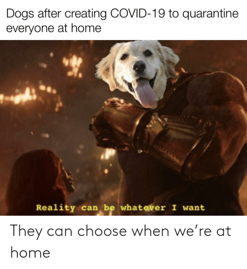 Reddit, Home, and Can: They can choose when we're at home