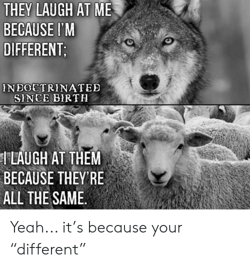 "Yeah, Im 14 & This Is Deep, and All The: THEY LAUGH AT ME  BECAUSE I'M  DIFFERENT  NBOCTRINATED  SINCE BIR TH  T LAUGH AT THEM  BECAUSE THEYRE  ALL THE SAME Yeah... it's because your ""different"""