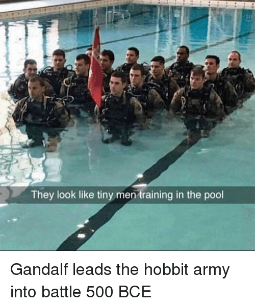 Gandalf, Army, and Hobbit: They look like tiny men training in the pool Gandalf leads the hobbit army into battle 500 BCE