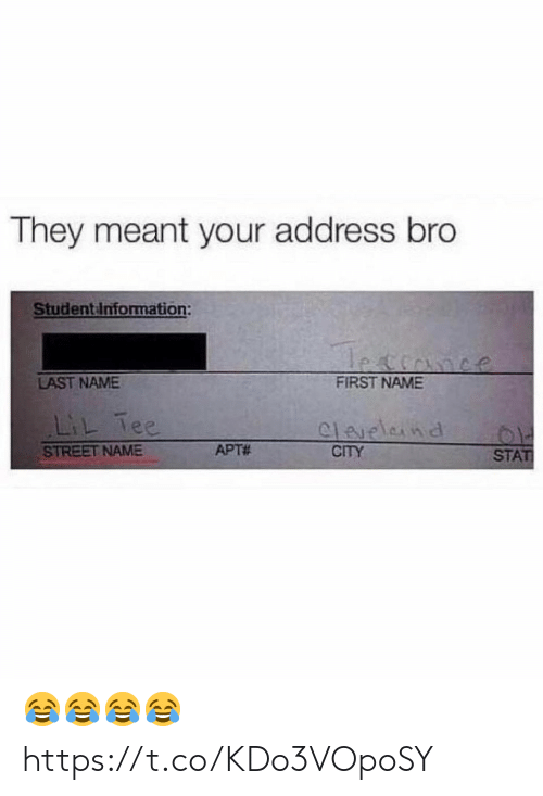 Funny, City, and Name: They meant your address bro  Studentinformation:  LAST NAME  FIRST NAME  L ee  STREET NAME  APT#  CITY  STAT 😂😂😂😂 https://t.co/KDo3VOpoSY