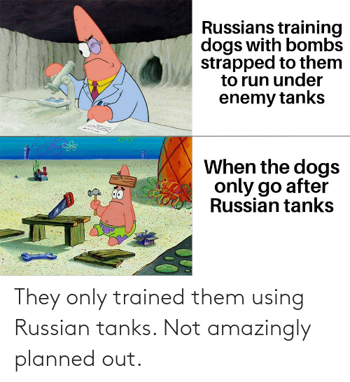 History, Russian, and Tanks: They only trained them using Russian tanks. Not amazingly planned out.