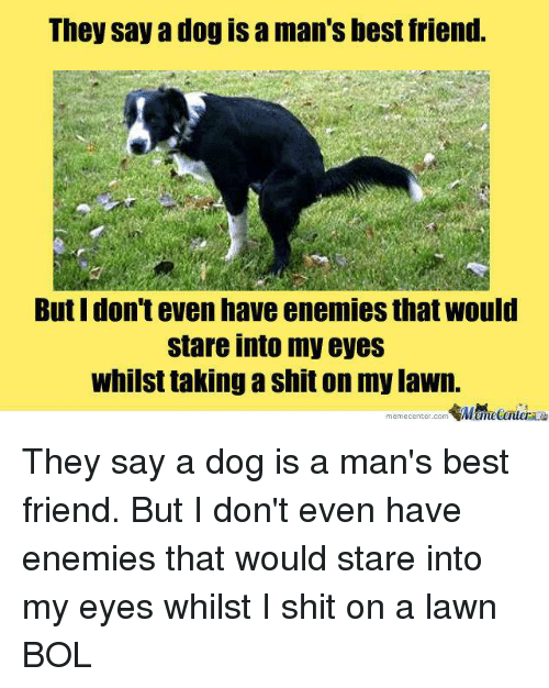Best Friend, Memes, and Shit: They say a dog is a man's best friend.  But I don't even have enemies that would  stare into my eyes  whilst taking a shit on my lawn.  memecenter.com emetentera They say a dog is a man's best friend. But I don't even have enemies that would stare into my eyes whilst I shit on a lawn BOL