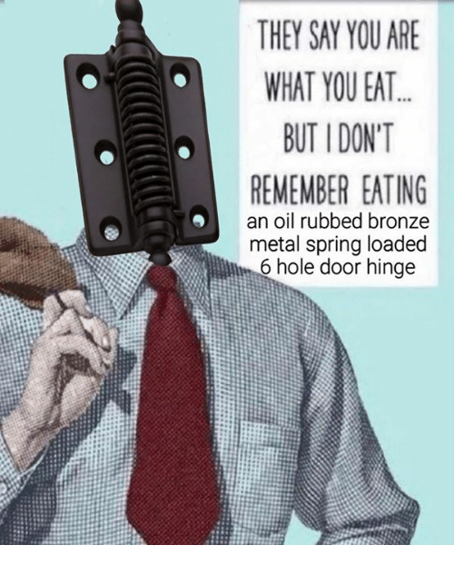 Dank, Holes, And Spring: THEY SAY YOU ARE WHAT YOU EAT BUTIDONT REMEMBER  EATING An Oil Rubbed Bronze Metal Spring Loaded 6 Hole Door Hinge