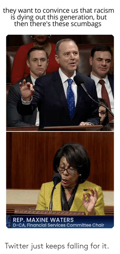 Racism, Tumblr, and Twitter: they want to convince us that racism  is dying out this generation, but  then there's these scumbags  REP. MAXINE WATERS  D-CA, Financial Services Committee Chair Twitter just keeps falling for it.