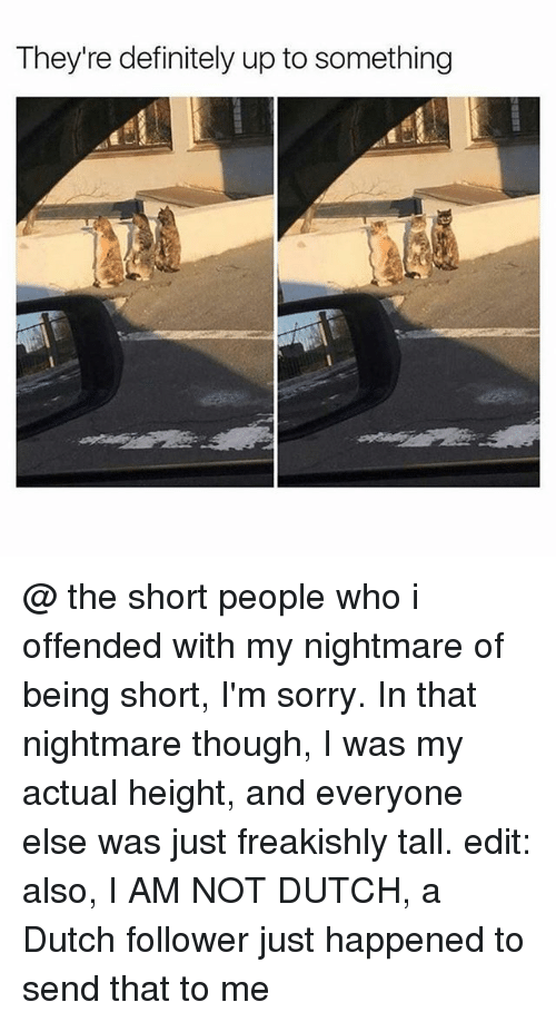 Definitely, Memes, and Sorry: They're definitely up to something @ the short people who i offended with my nightmare of being short, I'm sorry. In that nightmare though, I was my actual height, and everyone else was just freakishly tall. edit: also, I AM NOT DUTCH, a Dutch follower just happened to send that to me