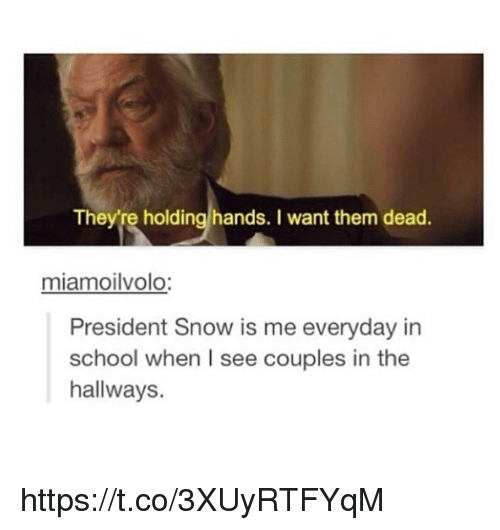 Memes, School, and Snow: They're holding hands. I want them dead  miamoilvolo  President Snow is me everyday in  school when I see couples in the  hallways. https://t.co/3XUyRTFYqM