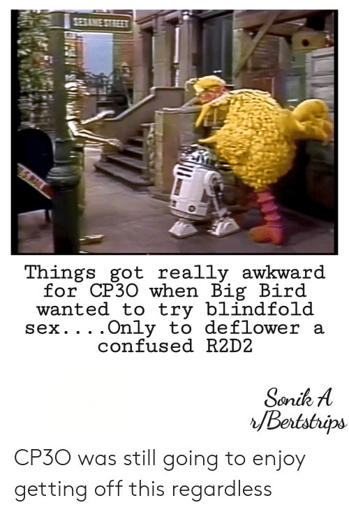 Confused, Sex, and Awkward: Things got really awkward  for CP30 when Big Bird  wanted to try blindfold  Sex. . . .  Only to deflower a  confused R2D2 CP3O was still going to enjoy getting off this regardless