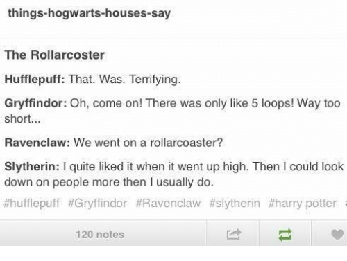 Things Hogwarts Houses Say The Rollarcoster Hufflepuff That Was