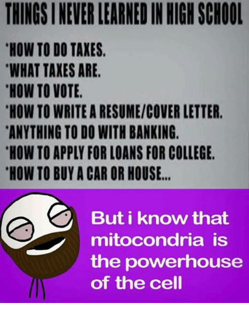 College, Memes, and School: THINGS I NEVER LEARNED IN HIGH SCHOOL  HOW TO DO TAXES  WHAT TAXES ARE  HOW TO VOTE  HOW TO WRITE A RESUME/COVER LETTER  ANYTHING TO DO WITH BANKING.  HOW TO APPLY FOR LOANS FOR COLLEGE  HOW TO BUY A CAR OR HOUSE..  But i know that  mitocondria is  the powerhouse  of the cell